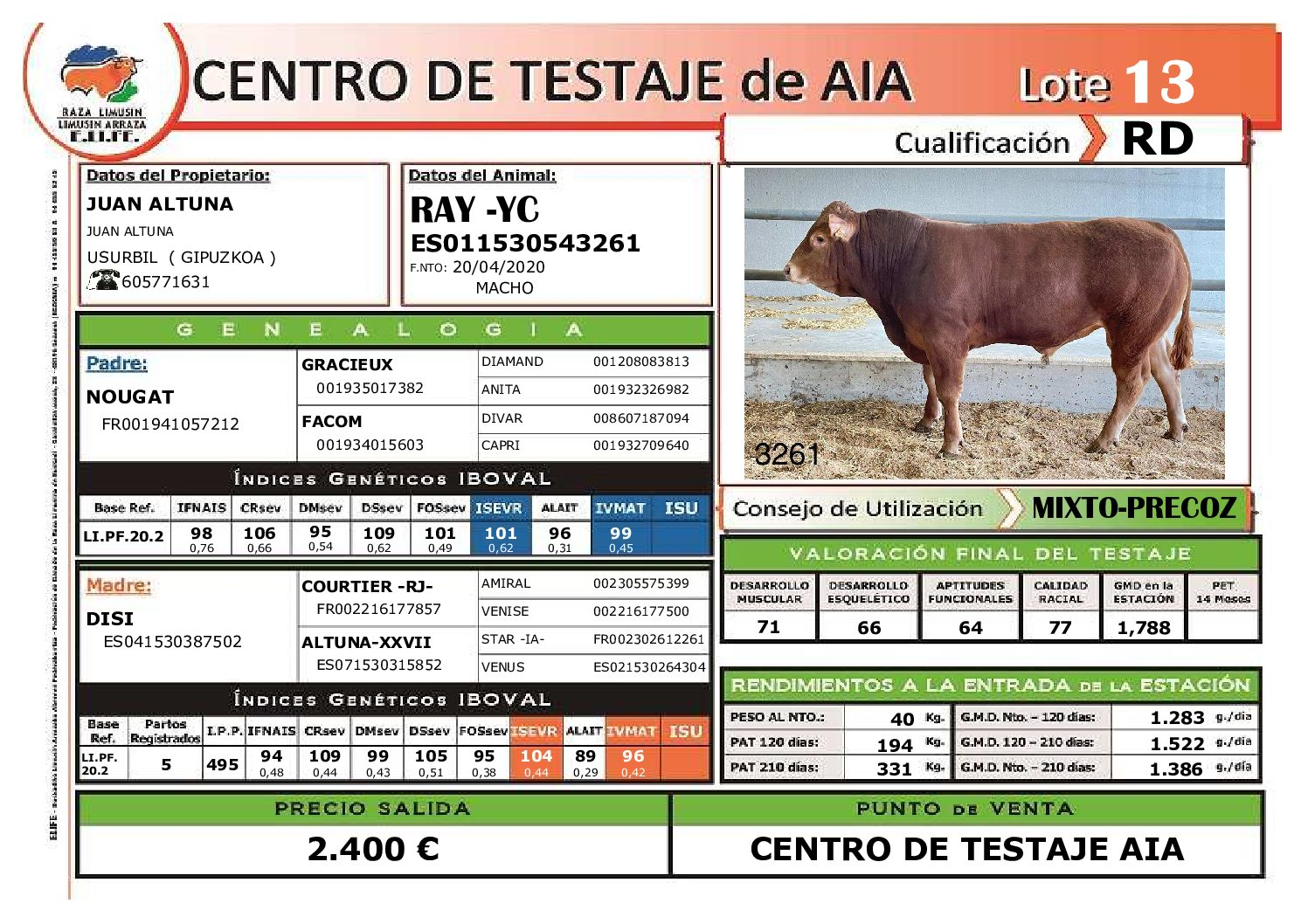 RAY-YC (Limusin Aptitud Cárnica). Criador: Juan Altuna